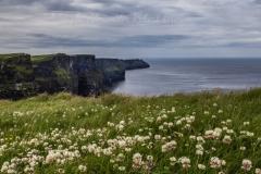 Viaggio in Irlanda 2019 - Contea di Clare